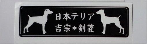 2009_0607_24