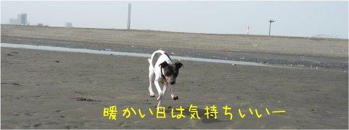 20100317_3