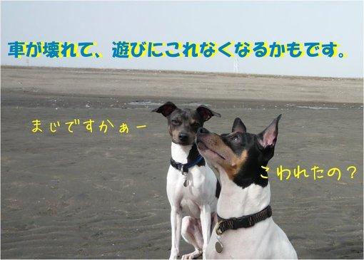 20100317_4_2