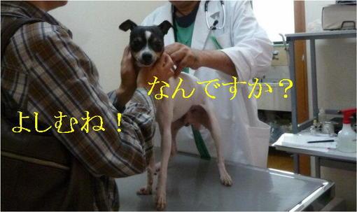 2010_0508_02