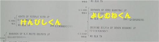 20140727_07